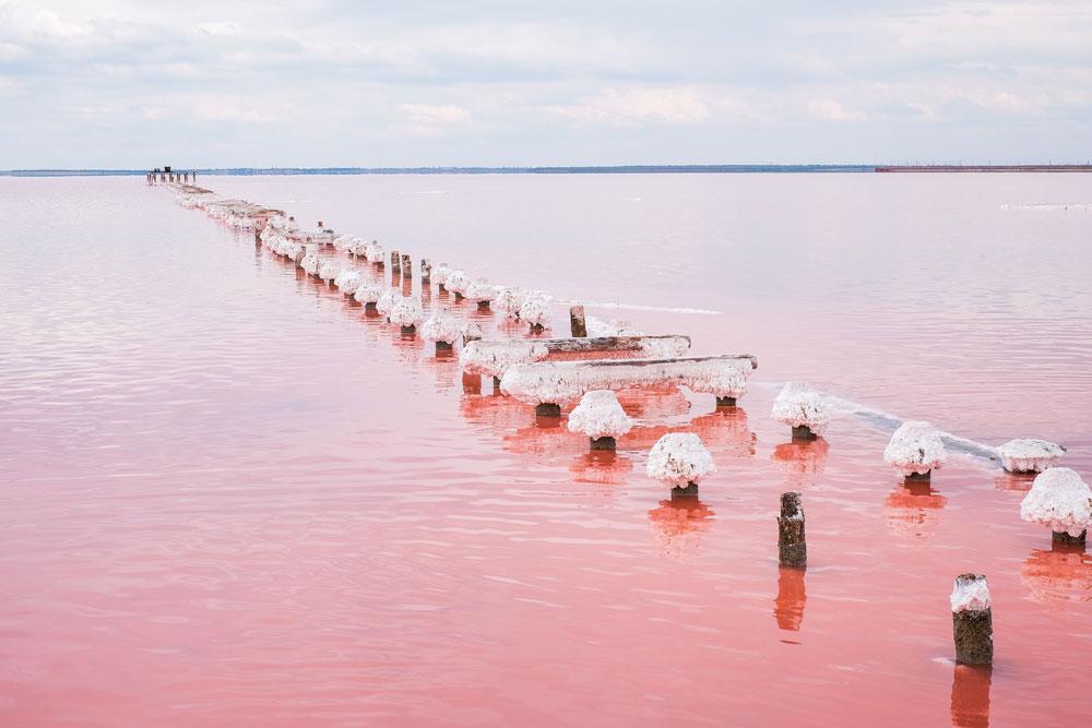 Lac-Rose-2